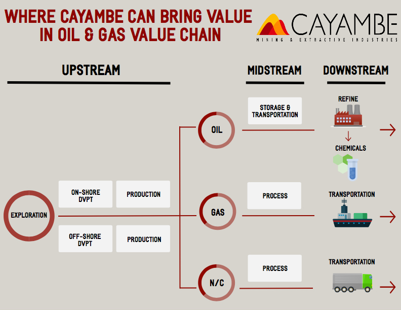 CAYAMBE FOR DUMMIES 1